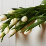 Blumenarrangement, Dekoration, Schacht Bestattungsinstitut